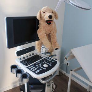 Labor Diagnostik und Apparate Ausstattung
